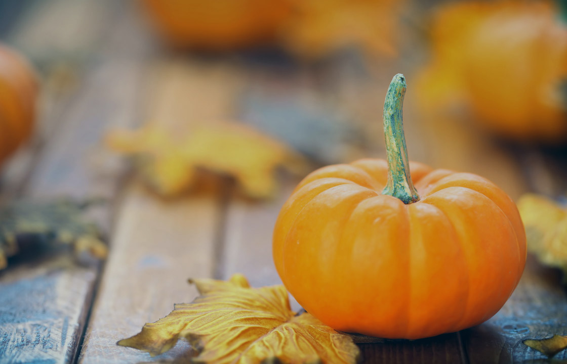 Seasonal Content Marketing Tips for Retailers